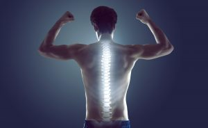 Mendip Chiropractic. Professional care and advice to help keep you in good shape.